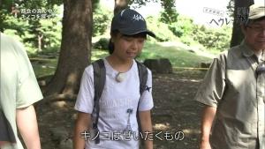 角田遥夏 又吉直樹のヘウレーカ!「キノコって木の子どもなの?」 0011
