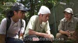 角田遥夏 又吉直樹のヘウレーカ!「キノコって木の子どもなの?」 0014