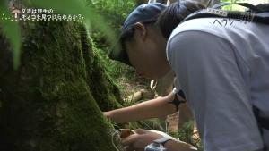角田遥夏 又吉直樹のヘウレーカ!「キノコって木の子どもなの?」 0022