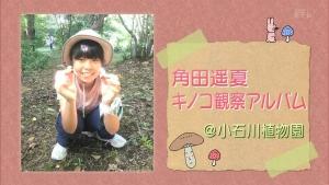 角田遥夏 又吉直樹のヘウレーカ!「キノコって木の子どもなの?」 0023