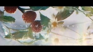吉高由里子 アロマリッチ 信号待ち篇0020