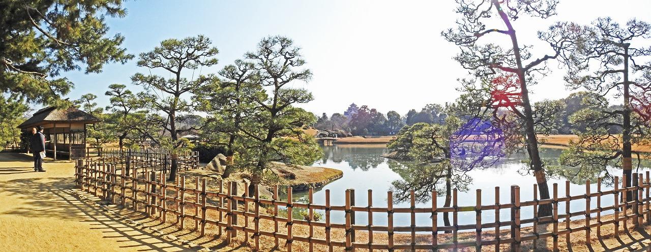 20190130 後楽園今日の午後の観光定番位置付近から眺めた園内ワイド風景 (1)