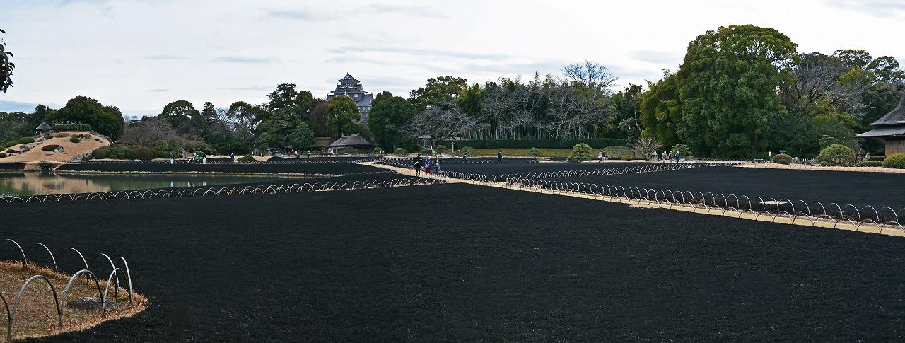20190214 後楽園芝焼き後の園内入り口の石橋付近から眺めた黒絨毯ワイド風景 (1)