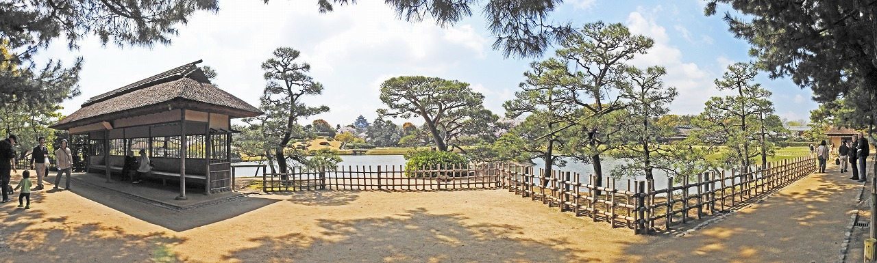 20190408 後楽園今日の観光定番位置の松林側から眺めた園内ワイド風景 (1)