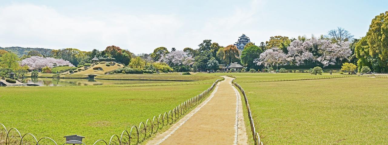 20190412 後楽園今日の園内入口石橋上から眺めた桜の様子のワイド風景 (1)