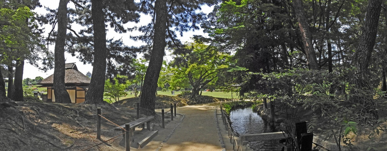 20190603 後楽園今日の松林の水車付近から眺めた園内ワイド風景 (1)