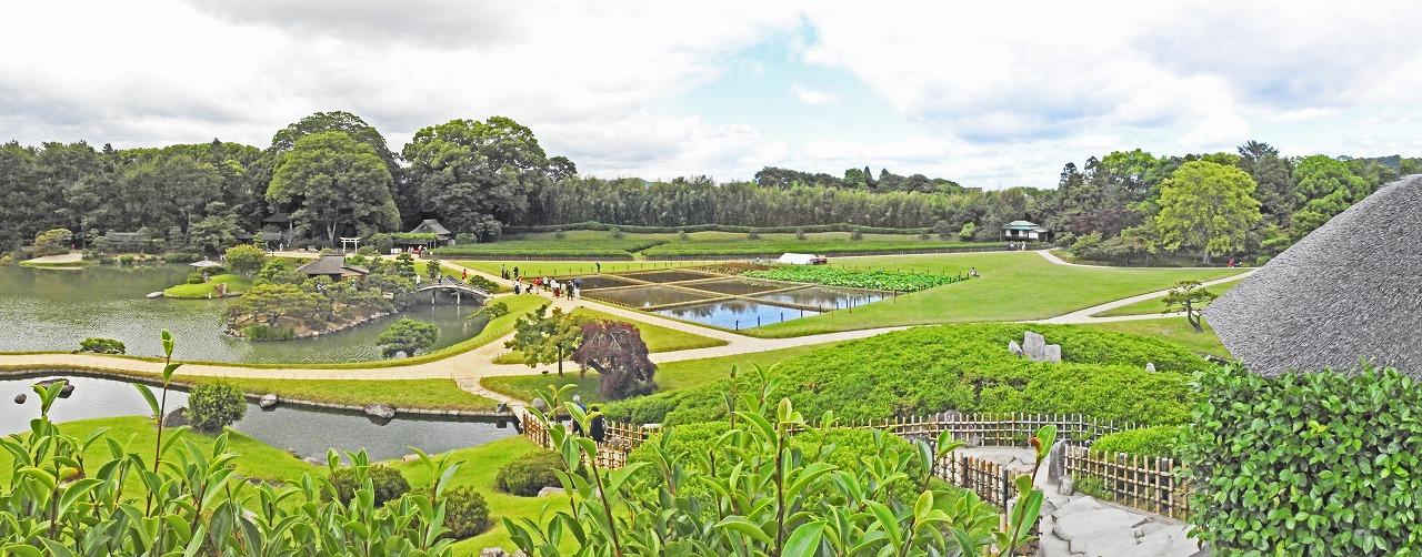 20190608 後楽園今日の午後の唯心山頂上から眺めた園内井田の田植え準備が整ったワイド風景 (1)