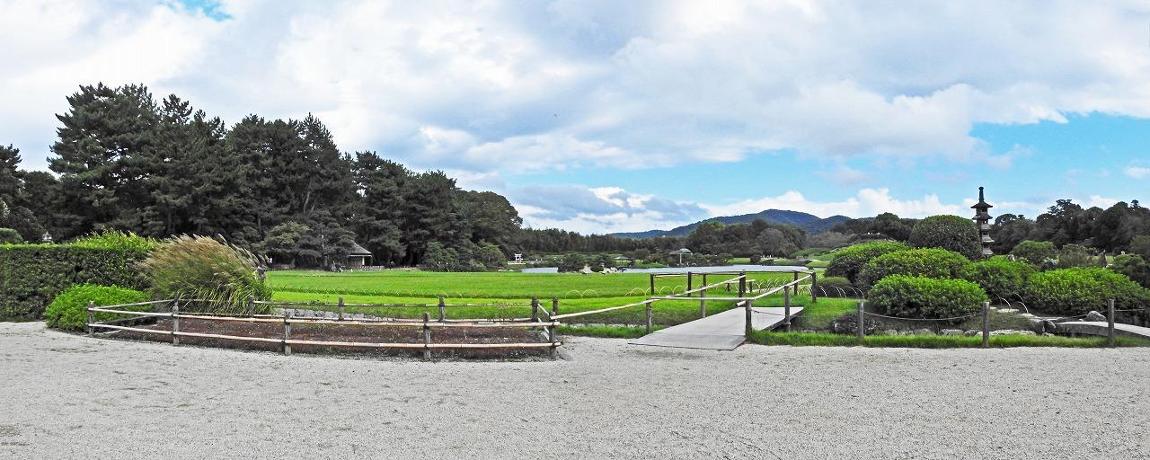 20191003 後楽園今日の午後の鶴鳴館前庭から眺めた園内ワイド風景 (1)