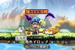 Maple_181208_222805.jpg