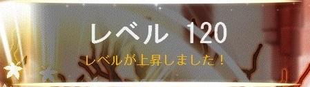 Maple_A_190620_160520.jpg