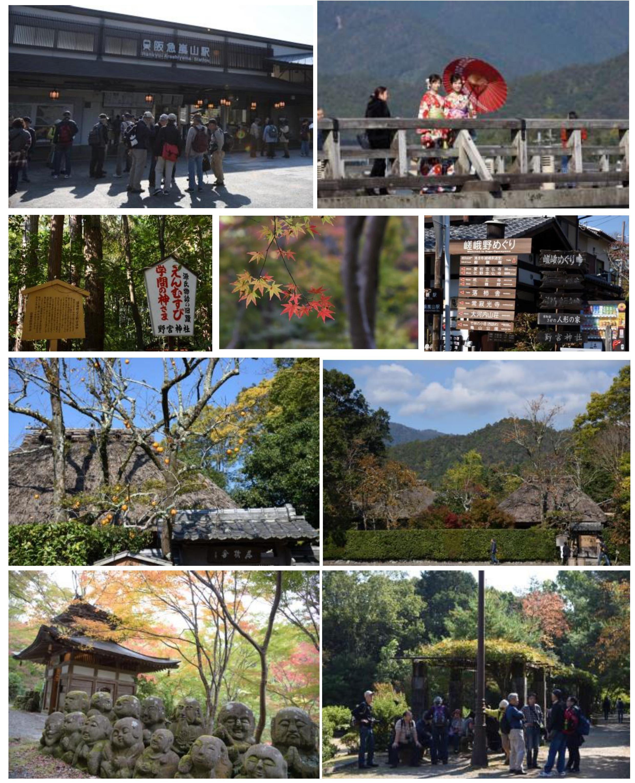 20181108_嵐山