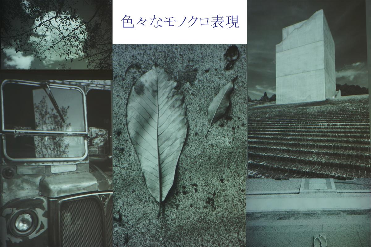 モノクロ撮影_w1200