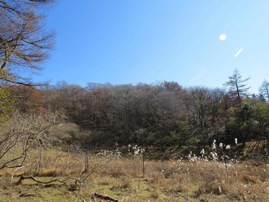 富士山麓ガイド東臼塚