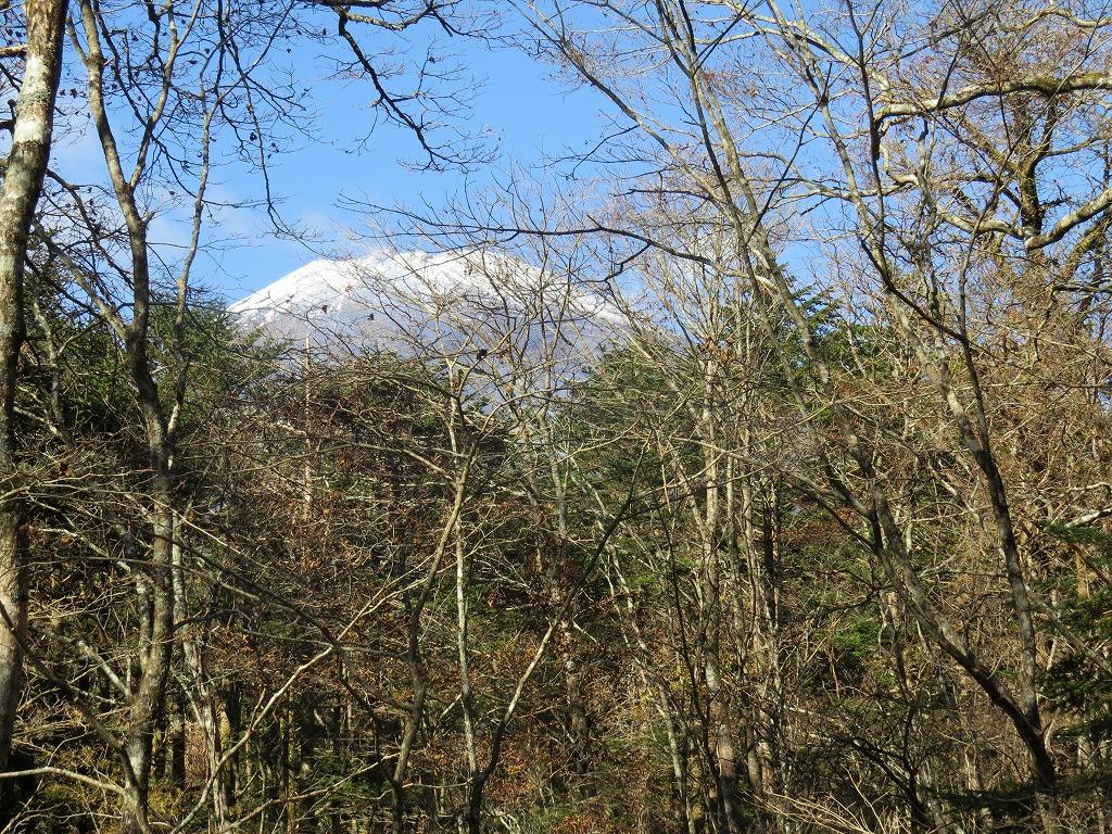 富士山麓ガイド富士山頂