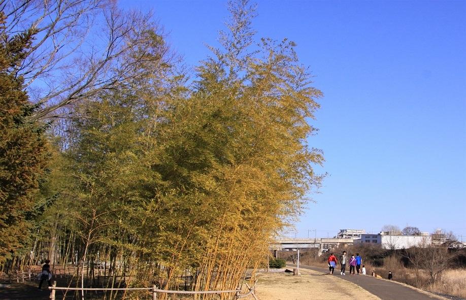 七北田公園4