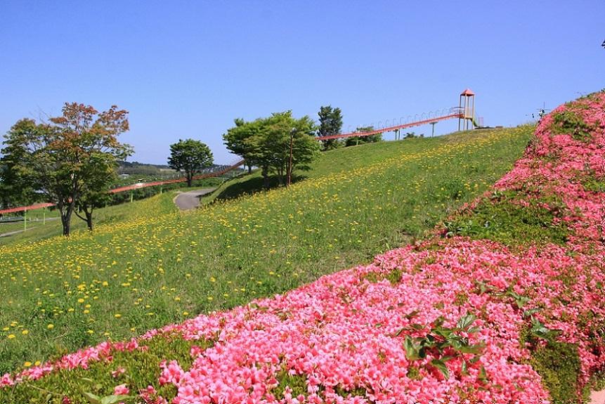 長沼フートピア公園3