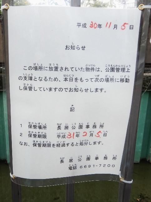 20181107-1 (11)