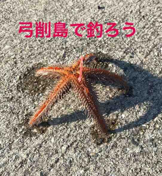 fc2blog_201908181443121da.jpg