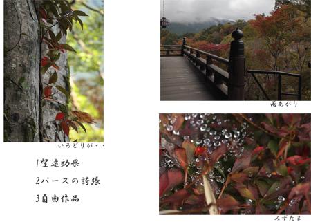 中畔さん_edited-3