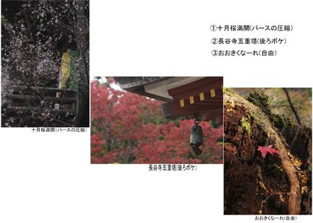 吉田さん_edited-3