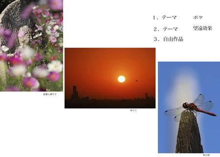 辻田さん_edited-3