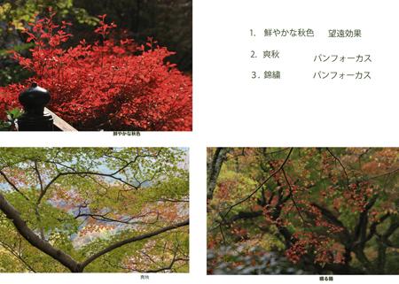 今田さん_edited-3