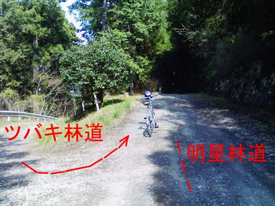 https://blogs.yahoo.co.jp/IMG/ybi/1/fe/4e/bazu55555/folder/109946/img_109946_14404766_1?1239170647