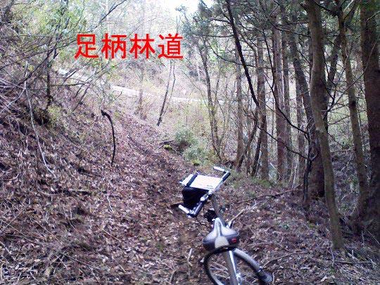 https://blogs.yahoo.co.jp/IMG/ybi/1/fe/4e/bazu55555/folder/109946/img_109946_14404766_9?1239170647