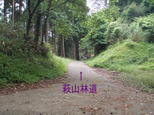 https://blogs.yahoo.co.jp/IMG/ybi/1/fe/4e/bazu55555/folder/109946/img_109946_29759414_10?1344610030