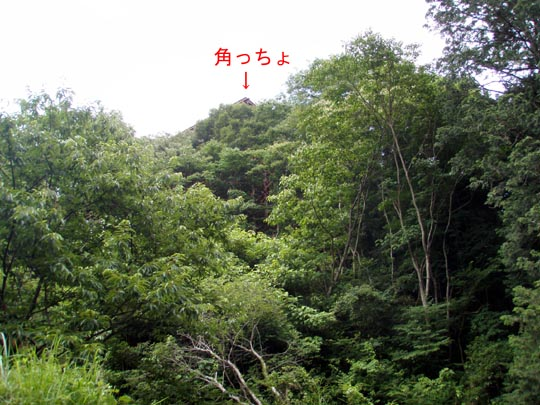 https://blogs.yahoo.co.jp/IMG/ybi/1/fe/4e/bazu55555/folder/109946/img_109946_30658272_11?1372506159