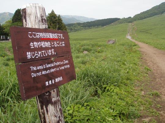 https://blogs.c.yimg.jp/res/blog-fe-4e/bazu55555/folder/109946/21/32740821/img_7_m?1467693226