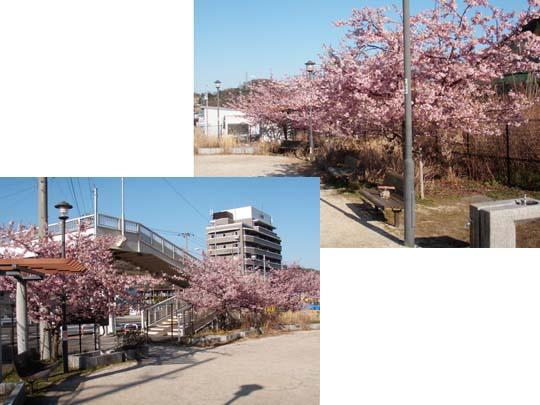 https://blog-001.west.edge.storage-yahoo.jp/res/blog-fe-4e/bazu55555/folder/109946/52/33019952/img_2_m?1487272414