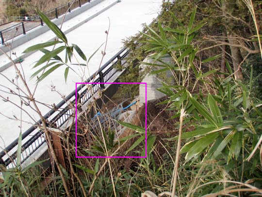 https://blog-001.west.edge.storage-yahoo.jp/res/blog-fe-4e/bazu55555/folder/109946/46/33024946/img_5_m?1487614286