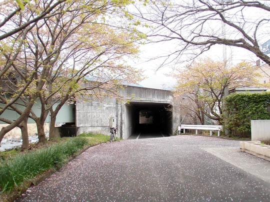 https://blog-001.west.edge.storage-yahoo.jp/res/blog-fe-4e/bazu55555/folder/109946/39/33052439/img_2_m?1489607632