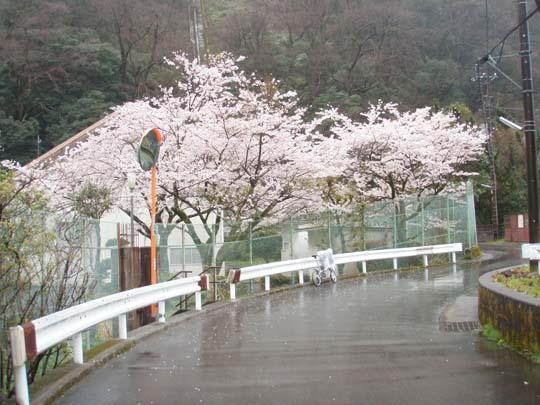 https://blog-001.west.edge.storage-yahoo.jp/res/blog-fe-4e/bazu55555/folder/109946/65/33077765/img_5_m?1491575952