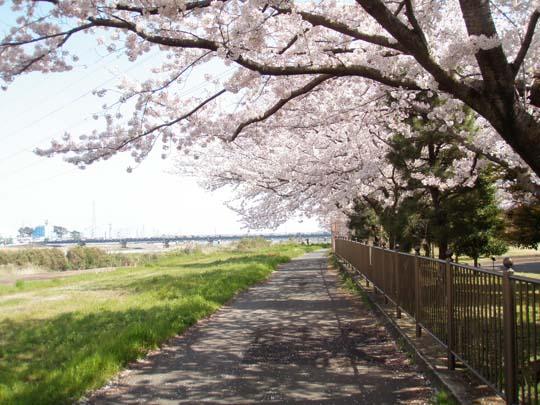 https://blog-001.west.edge.storage-yahoo.jp/res/blog-fe-4e/bazu55555/folder/109946/54/33084854/img_2_m?1492110035