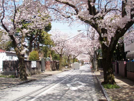 https://blog-001.west.edge.storage-yahoo.jp/res/blog-fe-4e/bazu55555/folder/109946/54/33084854/img_6_m?1492110035