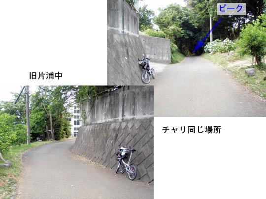 https://blog-001.west.edge.storage-yahoo.jp/res/blog-fe-4e/bazu55555/folder/109946/75/33167075/img_17_m?1498357676