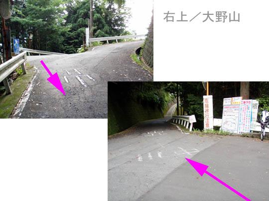 https://blog-001.west.edge.storage-yahoo.jp/res/blog-fe-4e/bazu55555/folder/109946/95/33176295/img_12_m?1498990535