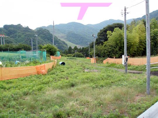 https://blog-001.west.edge.storage-yahoo.jp/res/blog-fe-4e/bazu55555/folder/109946/57/33183557/img_13_m?1499494224