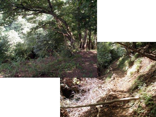 https://blog-001.west.edge.storage-yahoo.jp/res/blog-fe-4e/bazu55555/folder/109946/98/33242398/img_12_m?1503859040