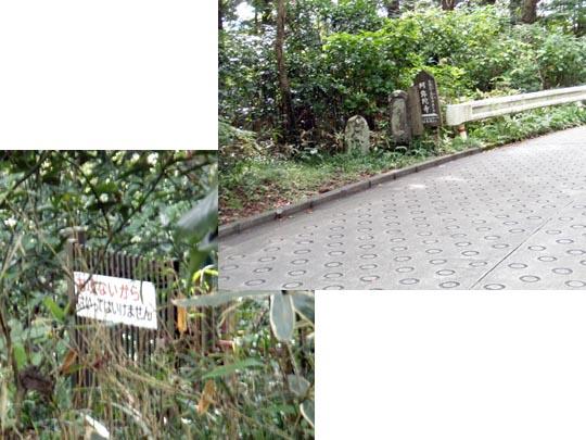 https://blog-001.west.edge.storage-yahoo.jp/res/blog-fe-4e/bazu55555/folder/109946/41/33252841/img_13_m?1504620475