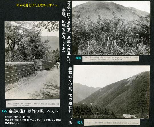 https://blog-001.west.edge.storage-yahoo.jp/res/blog-fe-4e/bazu55555/folder/725107/75/33265575/img_6_m?1505610950