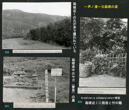https://blog-001.west.edge.storage-yahoo.jp/res/blog-fe-4e/bazu55555/folder/725107/75/33265575/img_7_m?1505610950