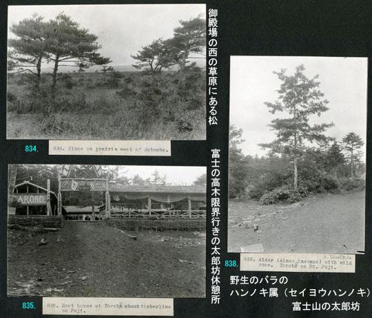 https://blog-001.west.edge.storage-yahoo.jp/res/blog-fe-4e/bazu55555/folder/725107/75/33265575/img_9_m?1505610950