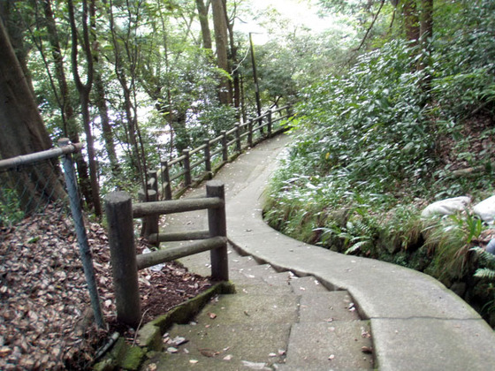 https://blog-001.west.edge.storage-yahoo.jp/res/blog-fe-4e/bazu55555/folder/109946/52/33277452/img_14_m?1506516108