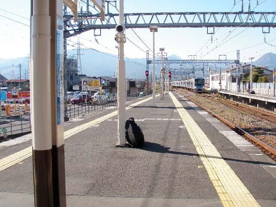 https://blog-001.west.edge.storage-yahoo.jp/res/blog-fe-4e/bazu55555/folder/109965/12/33363212/img_19_m?1513002283