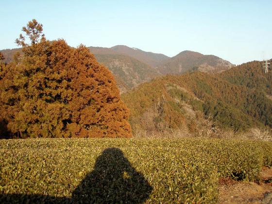 https://blog-001.west.edge.storage-yahoo.jp/res/blog-fe-4e/bazu55555/folder/109946/79/33432479/img_15_m?1518189091