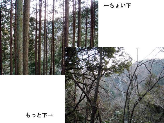 https://blog-001.west.edge.storage-yahoo.jp/res/blog-fe-4e/bazu55555/folder/109946/79/33432479/img_17_m?1518189091