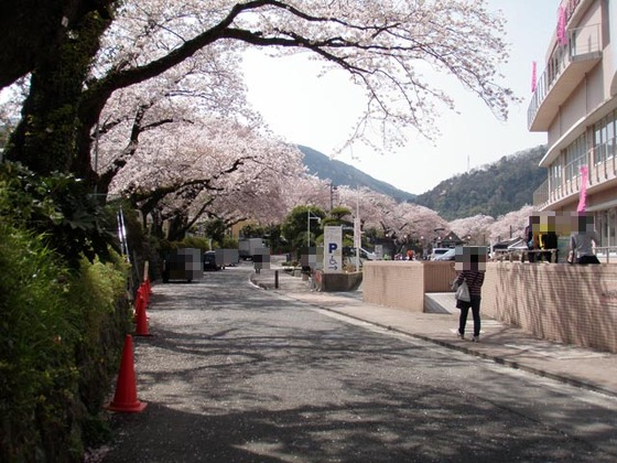 https://blog-001.west.edge.storage-yahoo.jp/res/blog-fe-4e/bazu55555/folder/109946/74/33492674/img_2_m?1522607361